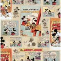 70-242 Mickey Vintage Episode tapetes